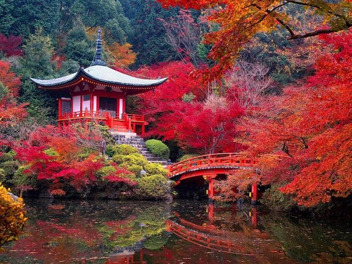 """""""Erstaunliche Orte um die Welt, um man zu entspannen.""""  Erstaunliche Orte um die Welt Wohn DesignTrend Japan"""