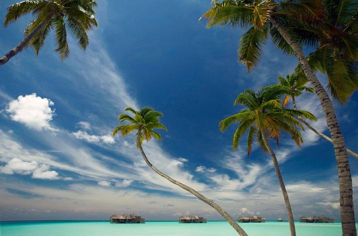 """""""Gili Lankanfushi: Das 5-Sterne-Resort vereint den puren und unverfälschten Zauber der Malediven mit Luxus, Wellness und perfektem Service.""""  Gili Lankanfushi: Ein Geschmack des Himmels Gili Lankanfushi Ein Geschmack des Himmels 01"""