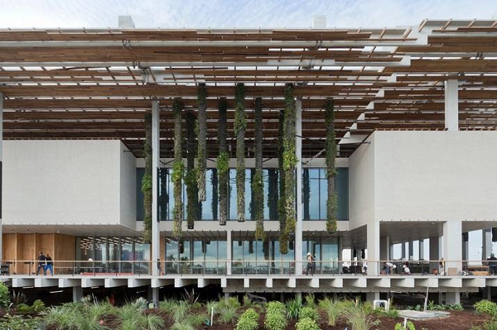 """""""Pérez Art Museum in Miami von Herzog & de Meuron eröffnet. Ein neues Museum für moderne und zeitgenössische Kunst soll zum Wahrzeichen von Miami werden.""""  Pérez Art Museum in Miami von Herzog & de Meuron P  rez Art Museum in Miami von Herzog de Meuron 02"""