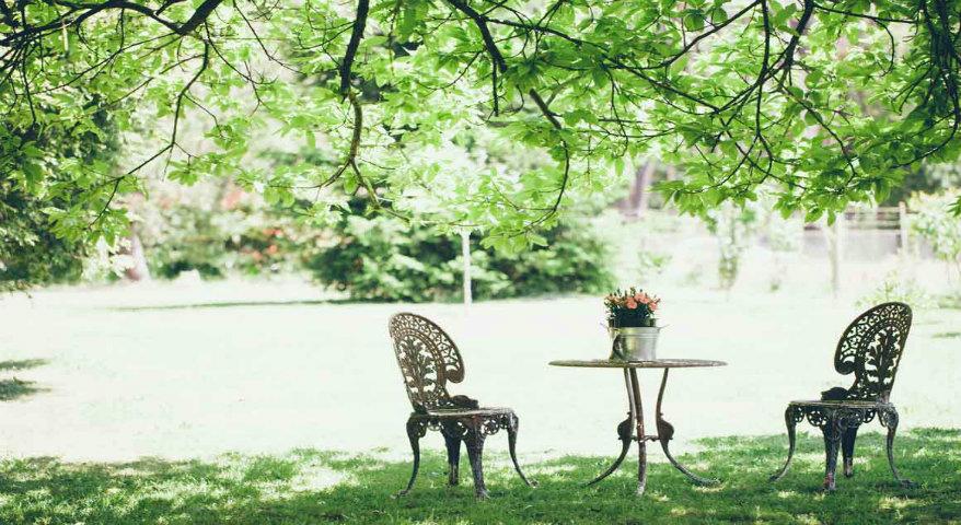 Bringen Sie den Frühling in Ihr Haus