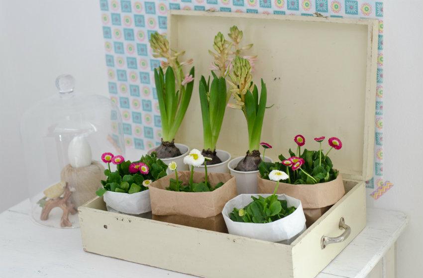 Bringen Sie Neues in Ihr Haus Frühling Bringen Sie den Frühling in Ihr Haus Bringen Sie den Fr  hling in Ihr Haus