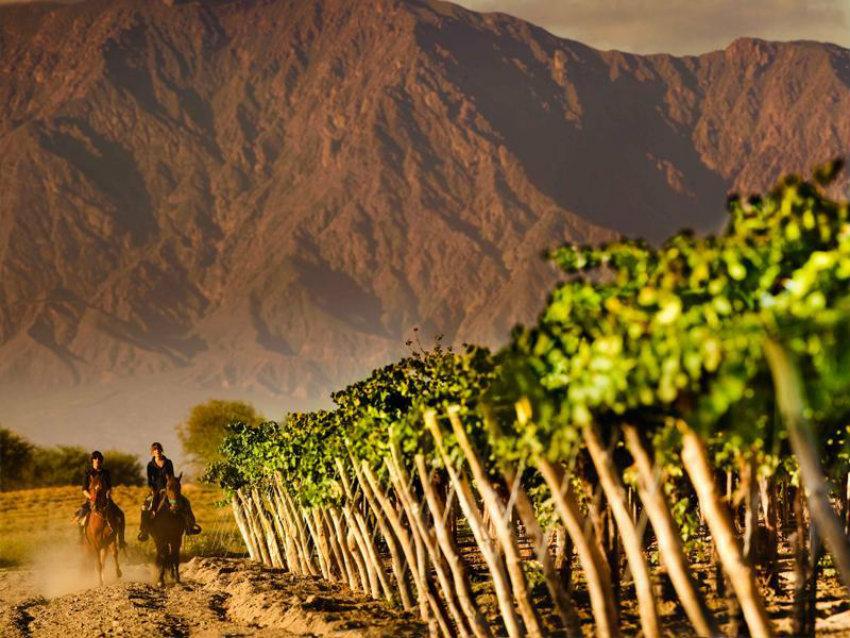4000017973-la-estancia-2 Weinregionen 7 luxuriöse geheime Weinregionen 4000017973 la estancia 2