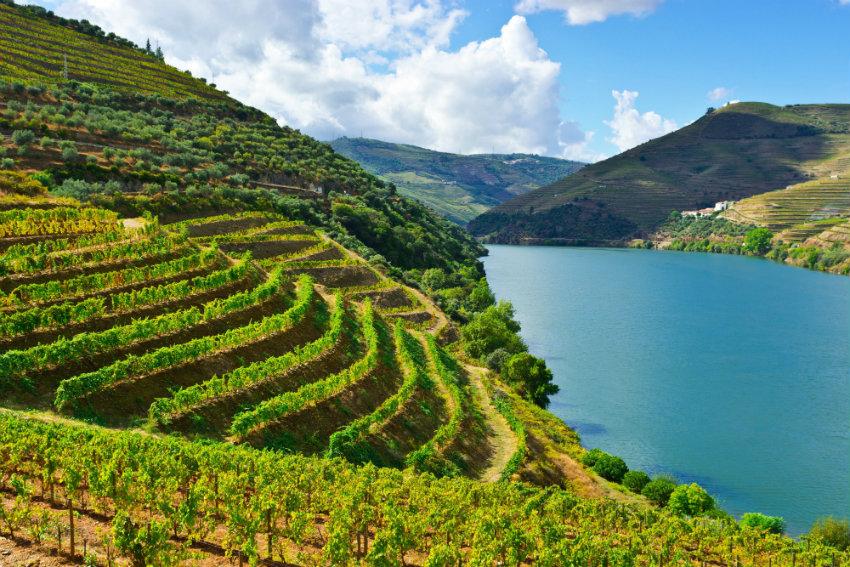 7 luxuriöse geheime Weinregionen